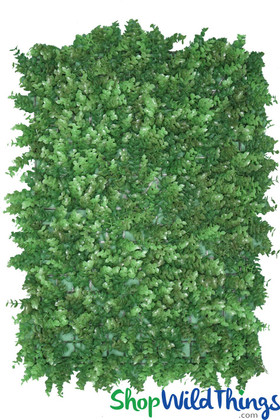 Artificial Greenery Wall Panel Boxwood with Long Leaves for Backdrop Displays and Walls