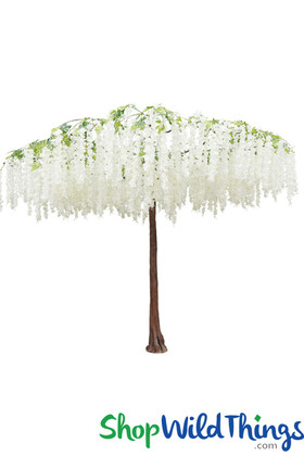 Flowering Weeping Cherry Tree Canopy - White - 9.8 Feet Tall x 12 Feet Wide