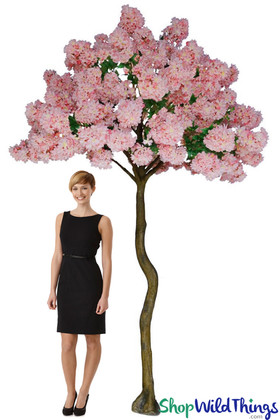 Flowering Plum Blossom Tree - 8.5' Tall - Pink