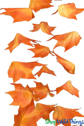 Artificial maple leaf garland | Fall decorations | Large hanging fall decorations | ShopWildThings.com
