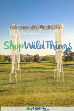Acrylic Arches & Gazebos - Modern Ceremony Spaces