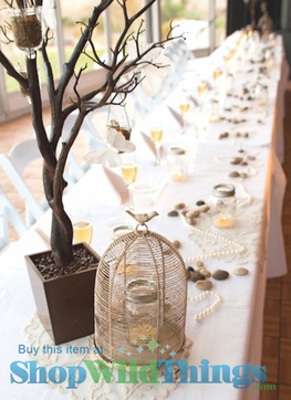 Centerpieces with Party Potential|Setting the Scen