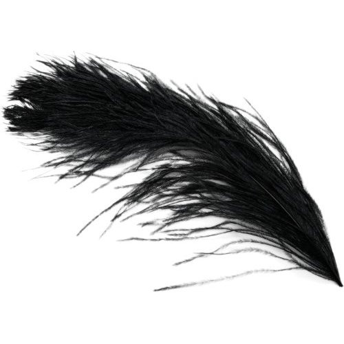 """Black Ostrich Feathers 29""""-32"""" - SPADS"""