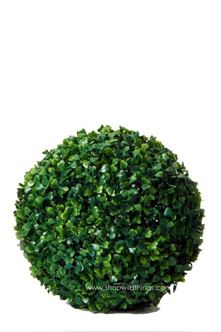 "Kissing Ball Plant Topiary Boxwood - Mature Green - 10"""