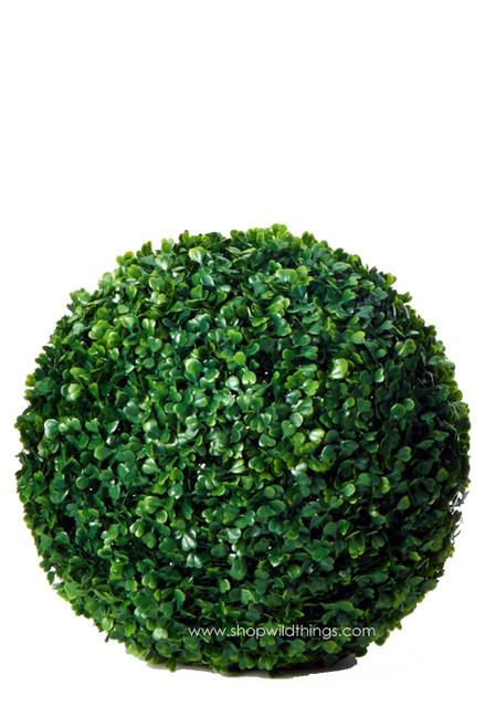 "Kissing Ball Plant Topiary Boxwood - Mature Green - 14"""