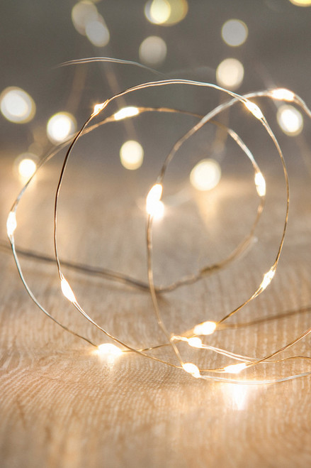 COMING SOON! Fairy String Eiffel Vase Lights - 20 Warm White LEDs - Waterproof - 7' - Coin  Battery