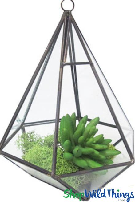"Geometric Hanging or Tabletop Terrarium & Candle Holder - Black - 8 3/4"" Tall Hexagon"
