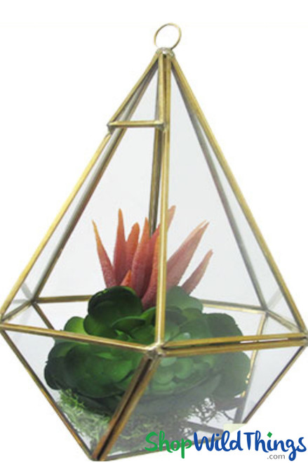 """Geometric Hanging or Tabletop Terrarium & Candle Holder - Gold - 8 3/4"""" Tall Hexagon"""