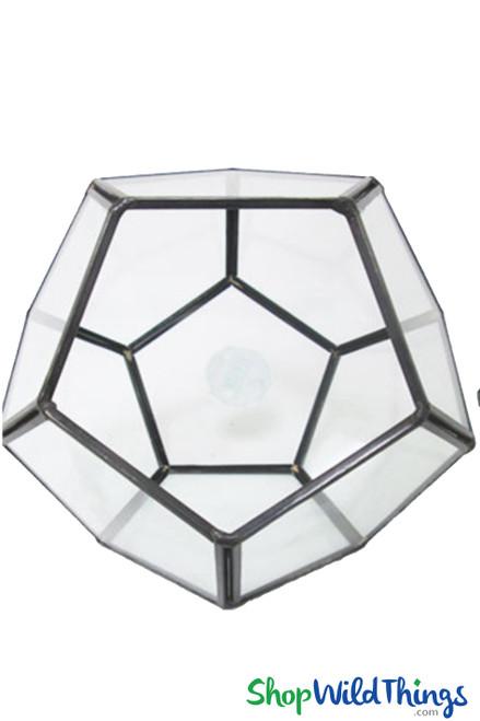 "Geometric Tabletop Terrarium & Candle Holder - Black 5 1/2"" Tall Pentagon"