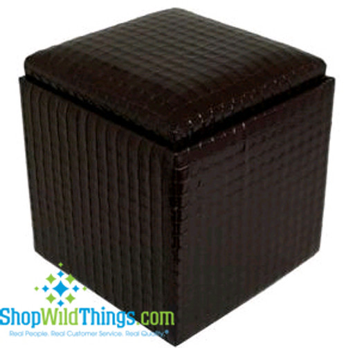 """Leather Ottoman with Storage - Black  Leather  17""""x18"""""""