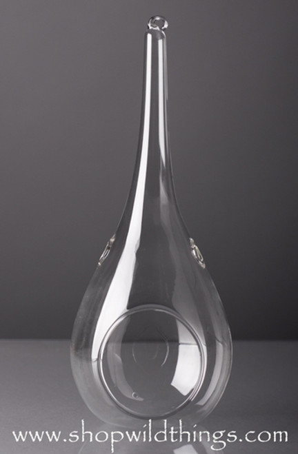 "Raindrop Teardrop Glass Candle Holders (& Terrarium!) 7.5-9"" Long"