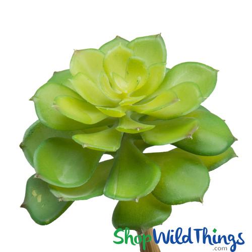 "Artificial Echeveria Nurnberg Succulent - 9"" Green"
