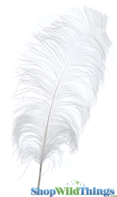 """White Ostrich Feathers 13"""" - 15"""" - SPADS"""