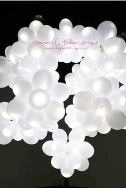 LED Balloon Light White -Steady Light 12 pcs