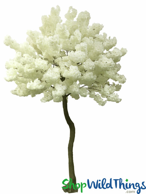 Flowering Dogwood Tree - 8.5 Feet Tall - Cream - Extra Full - 15 Branches