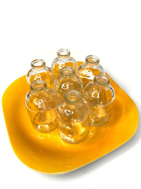 Flower Cutting Holder - Orange Plate & 7 Glass Bottles