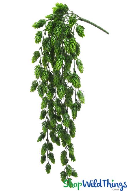 "Pine Bud Spray & Vine - 6 Hanging Stems - 30"""