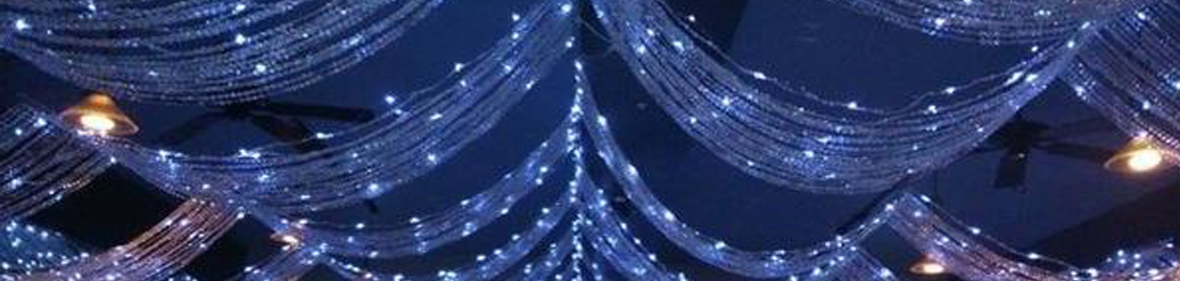 Crystal Ceiling Curtains - ShopWildThings