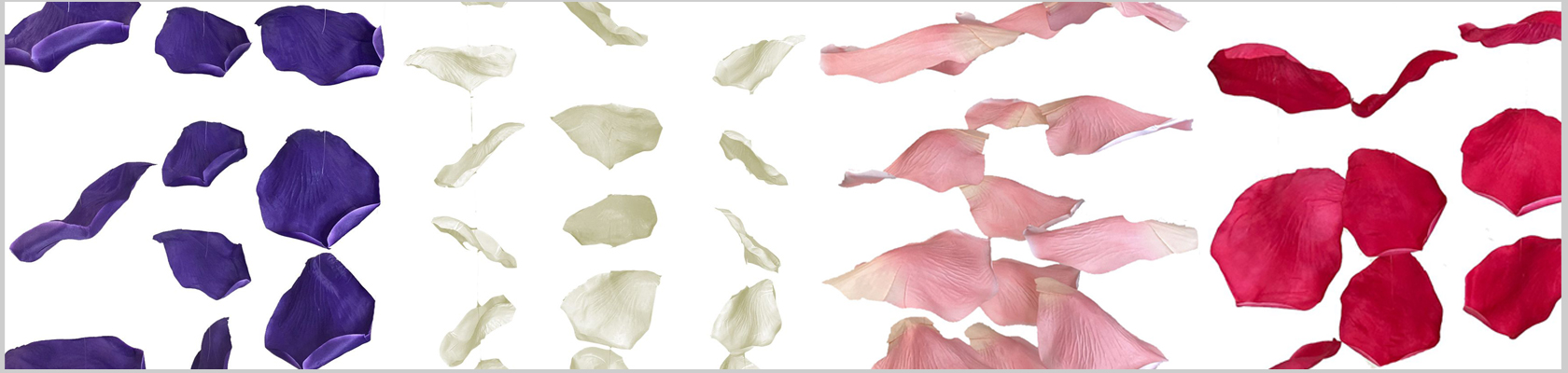 Hanging Floral Petal Garlands - ShopWildThings