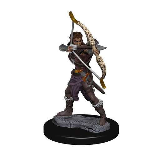 Icons of the Realms - Elf - Female - Ranger