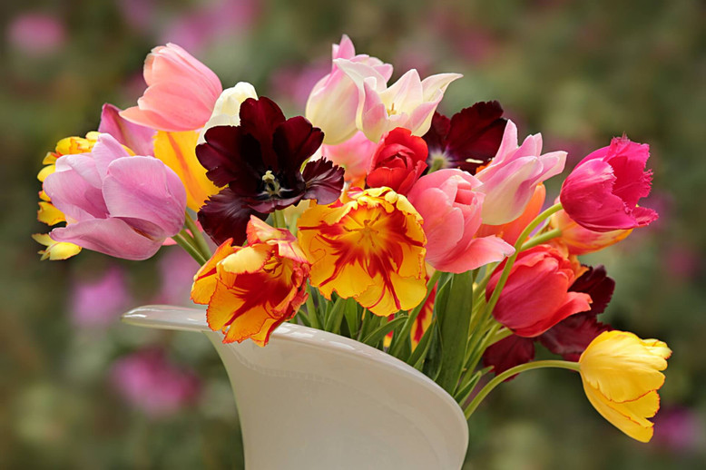 Everything You Need to Know About Keeping Flowers Fresh