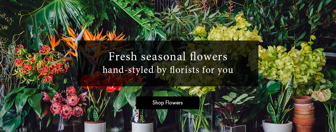 Flower Delivery Auckland, Florists Auckland, Fresh Seasonal Flowers
