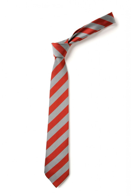 St George's School Tie