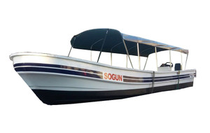 High Seas Passenger Boats (exact design may vary)
