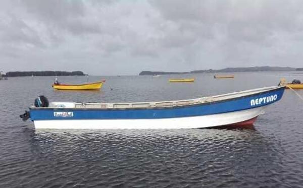 High Seas Cargo Boats