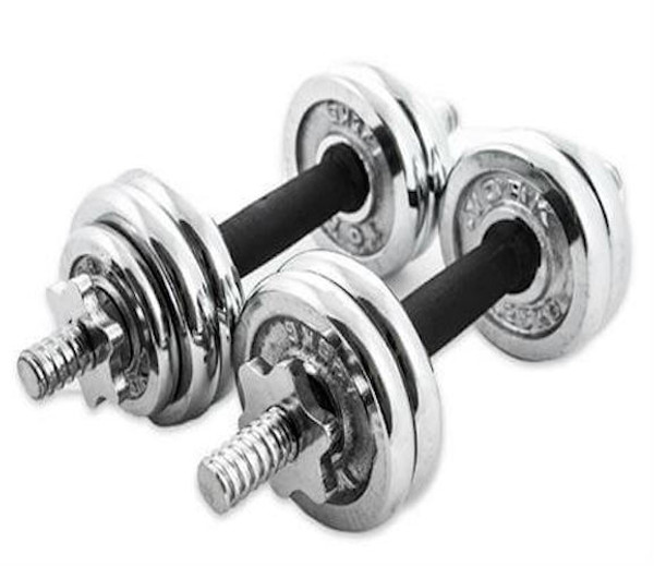 Fortis 15KG Chrome Dumbells
