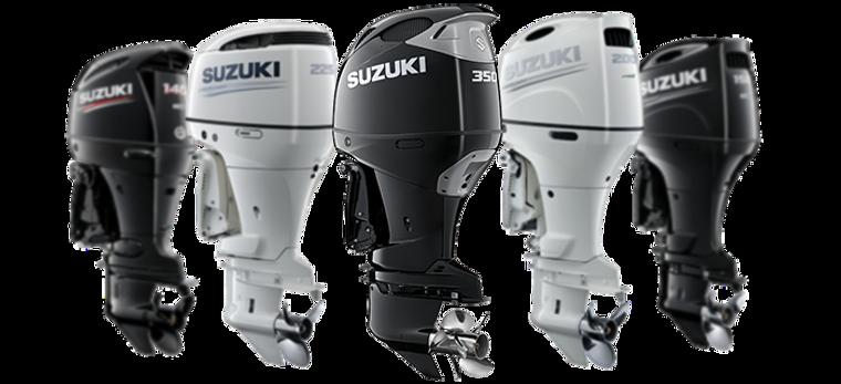 Suzuki Outboard Motor - Domestic