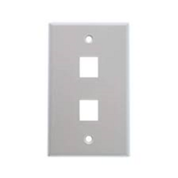 2-Port Stainless Steel Wall Plate