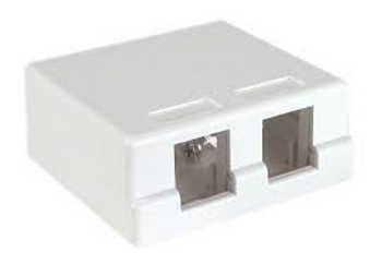 2 Port Ivory Surface Box