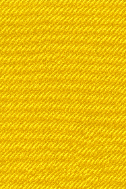 Yellow Skirting