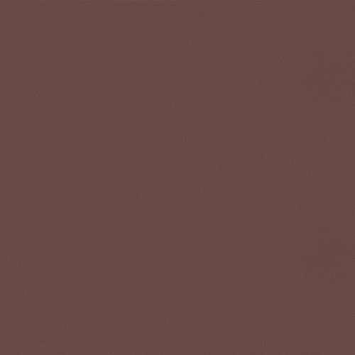 Brown Seat Color