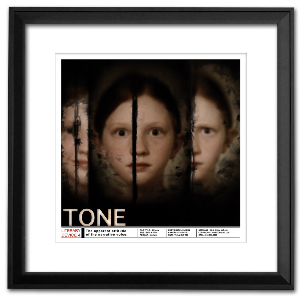 Tone Classoom Literary Poster