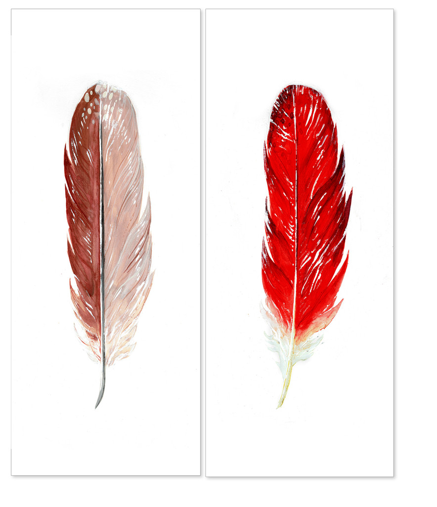 Male and Female Cardinal Feather Watercolor Set. West Virginia State Bird. Fine Art Paper, Laminated, or Framed. Multiple Sizes Available for Home, Office, or School.