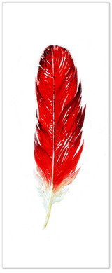 Cardinal Feather Art. West Virginia State Bird. Fine Art Paper, Canvas with Hanger or Framed.