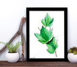 West Virginia Botanicals Watercolor Red Maple Leaves Fine Art Print. Plain Paper, Laminated, or Framed. Multiple Sizes Available.