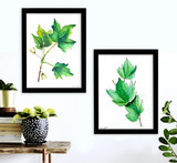 West Virginia Botanicals Watercolor Maple Leaves Set Fine Art Prints. Plain Paper, Laminated, or Framed. Multiple Sizes Available.