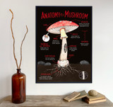 Illustrated Anatomy of a Mushroom Fine Art Print. Plain Paper, Laminated, or Framed. Multiple Sizes Available.