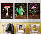 Illustrated Plant Anatomy Fine Art Print Set - Flower, Mushroom, Cactus. Plain Paper, Laminated, or Framed. Multiple Sizes Available.