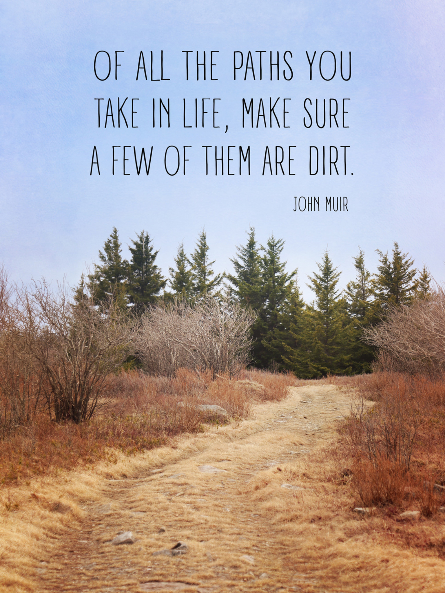Of All The Paths You Take In Life Make Sure A Few Of Them Are Dirt