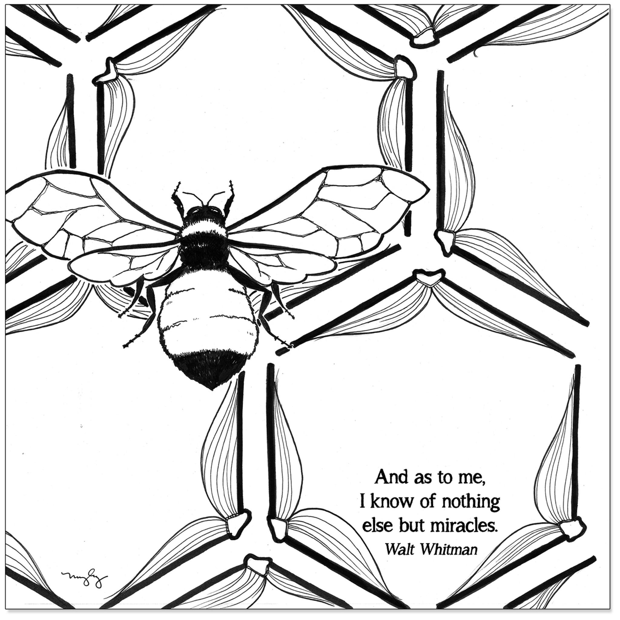 Walt Whitman Literary Quote Print. Fine Art Paper