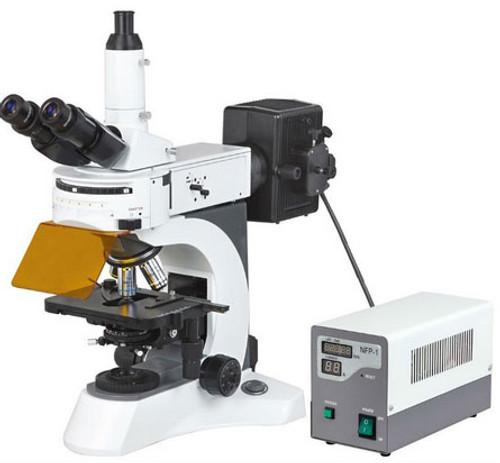 MS 811 Fluorescent Microscope