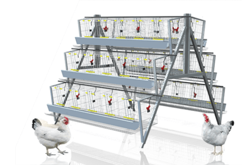Poultry Battery Cage NewMachines