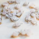 The Rose Quartz Pendant Necklace