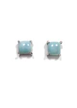 Larimar Stud Earrings 43