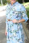 Vintage Blissful Bluebird Dress