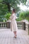 Vintage Belle Dress